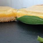 exquis citron vert basilic québéquoise copie