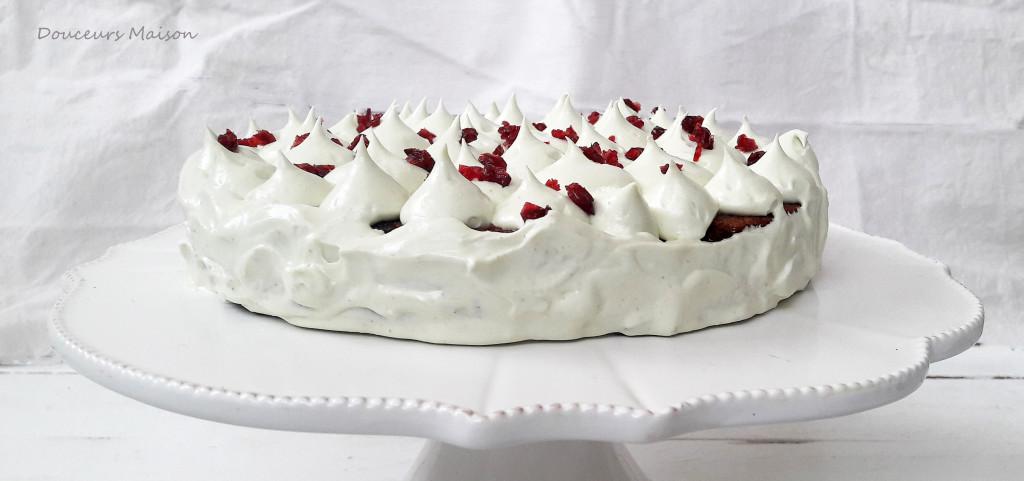 gateau choco  pistache cramberries