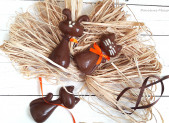 Chat & Lapin s'invitent à Pâques !